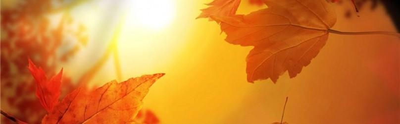Осень и парфюмерия.